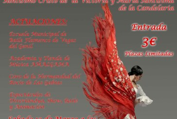 Festival Benéfico de Música y Baile