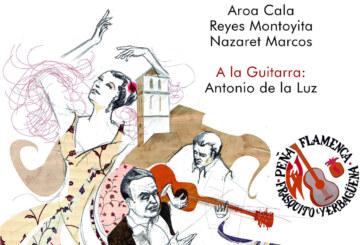 Fase Clasificatoria del V Concurso de Cante en la Peña Flamenca Frasquito Yerbabuena