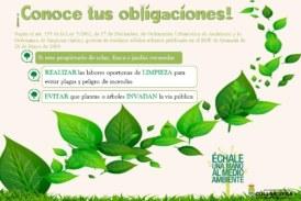 Bando sobre limpieza de Solares, Fincas y Jardines