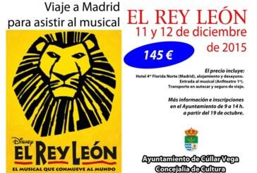"""Viaje a Madrid para ver el musical: """"El Rey León"""""""