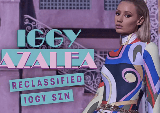 "Cover of ""Iggy SZN"""