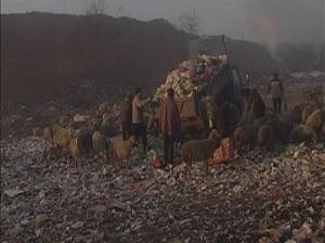 《垃圾圍城》 | CULTaMAP 文化地圖