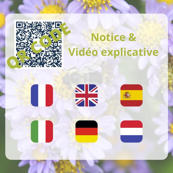 notice qr code