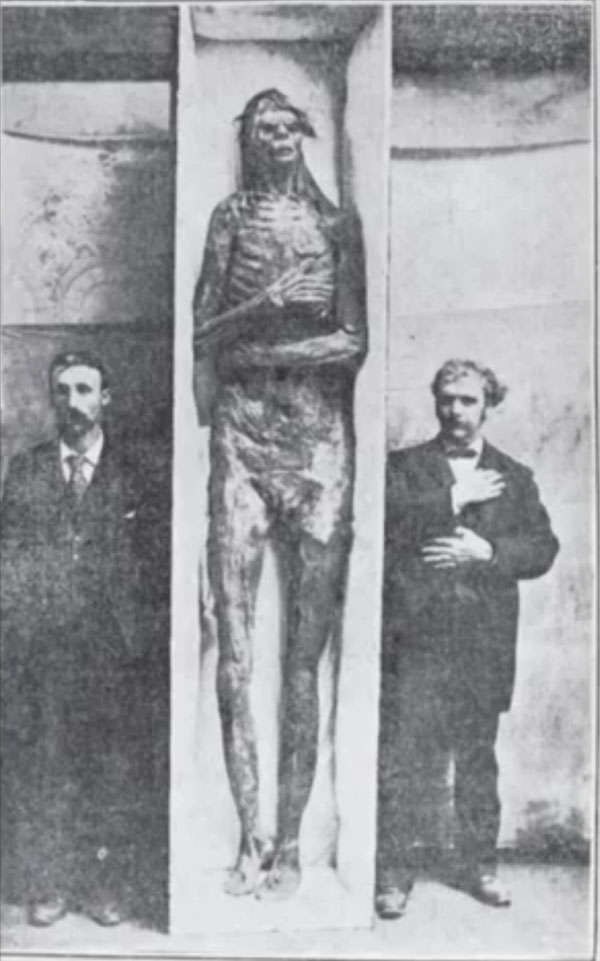 Giant skeleton of an ancient mound builder