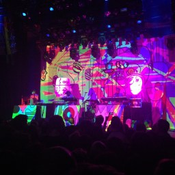 Epic concert by Animal Collective at Rewire Festival