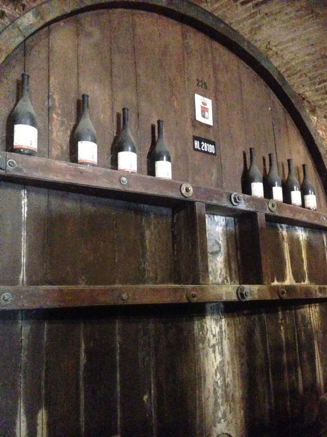 Barolo wine trip