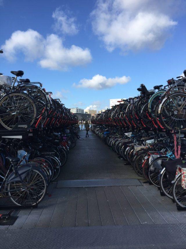 Amsterdam Noord, Bikes, Fiets