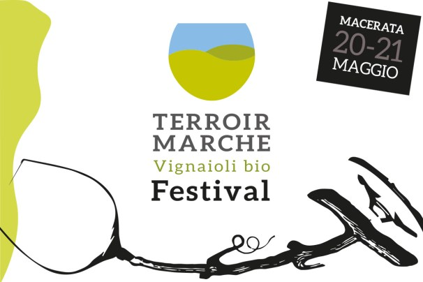 Terroir Marche