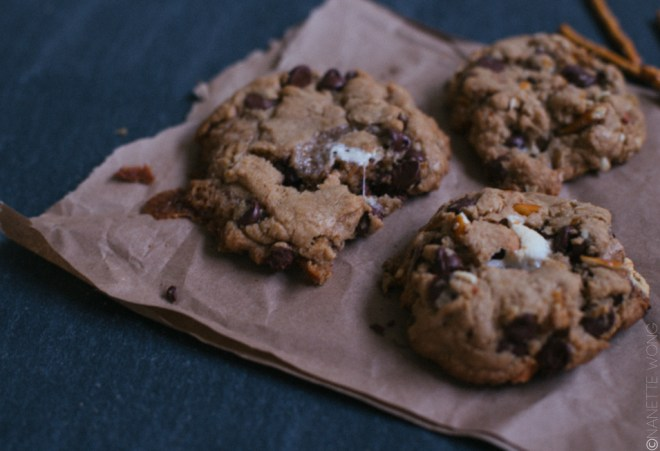 campfirecookies-13