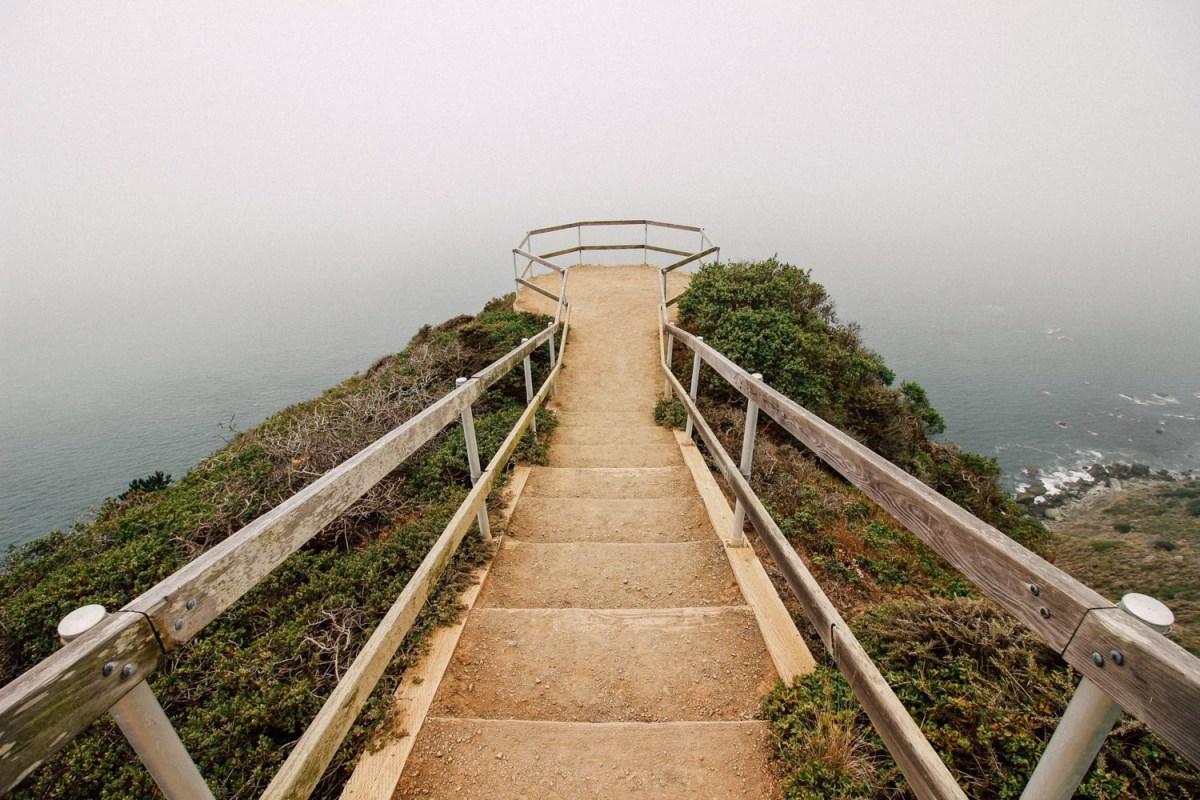 Hike to Muir Woods + Overlook