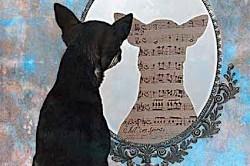 'El perro que comía silencio', de Isabel Mellado