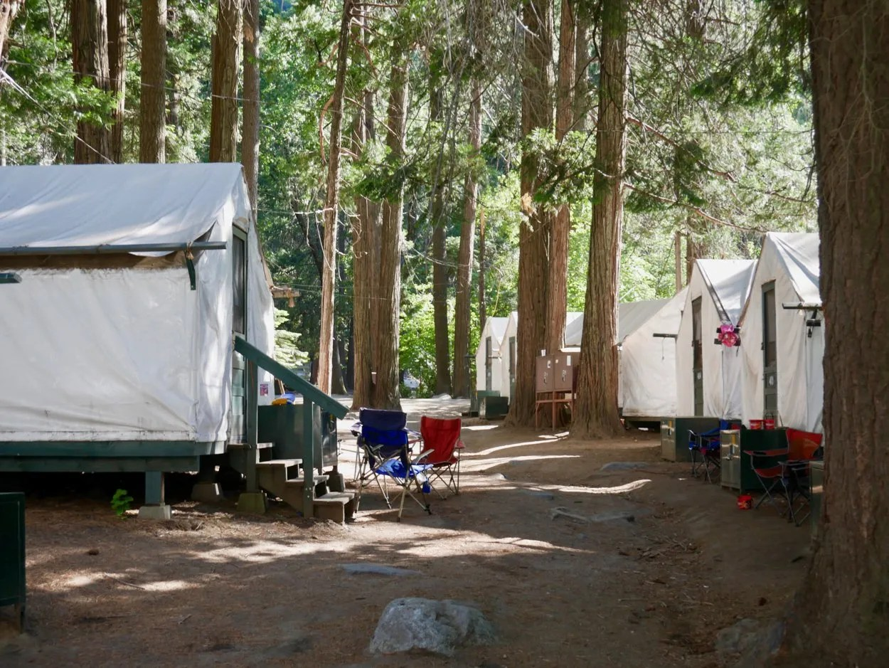Row of white tent cabins Curry Village Yosemite
