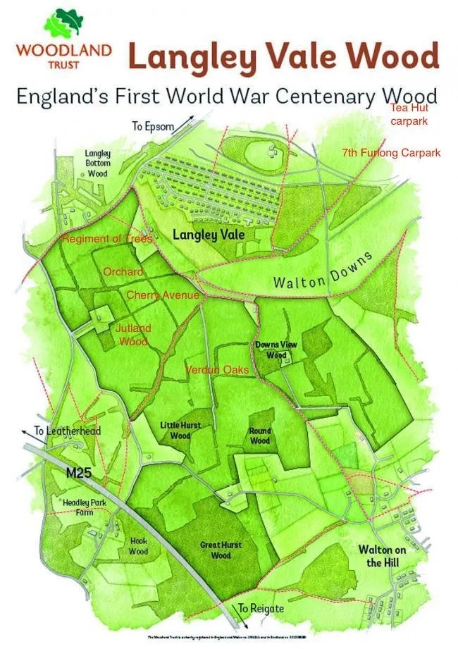 Langley Vale Wood map showing Regiment of Trees, Jutland Wood, Verdun Oaks and Epsom Downs car parks