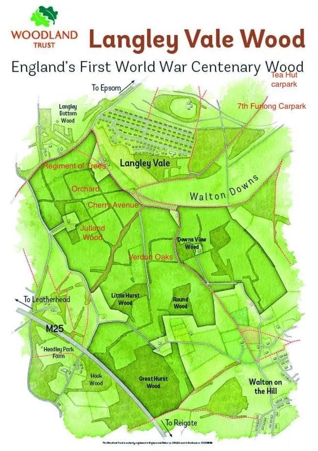 Langley Vale Wood map showing Regiment of Trees, Jutland Wood, Verdun Oaks and Epsom Downs car parks
