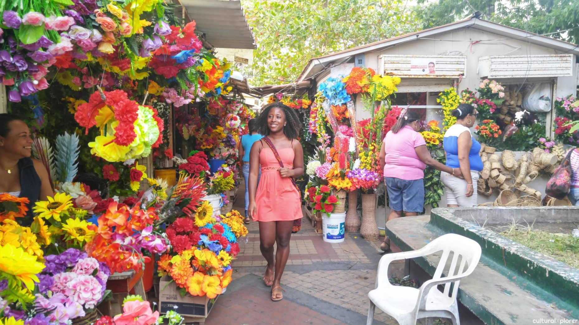 El Parque de las Flores | Cultural Xplorer