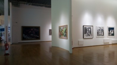 pac mostra africa milano (3)