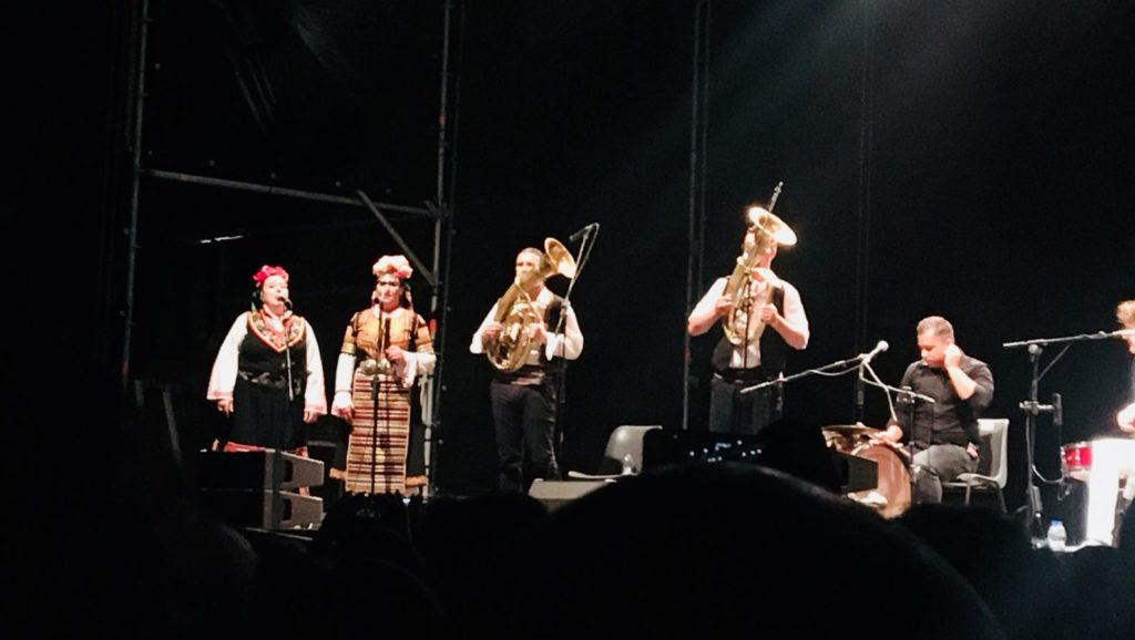 bregovic musicista