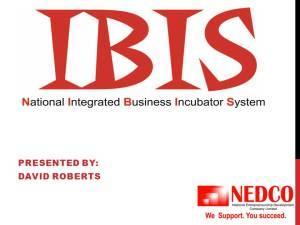 IBIS I2I