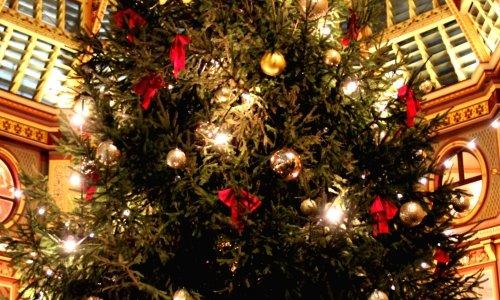 10 activités pour vous plonger dans l'ambiance de Noël à Londres
