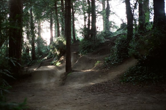 terry barentsen bmx trails