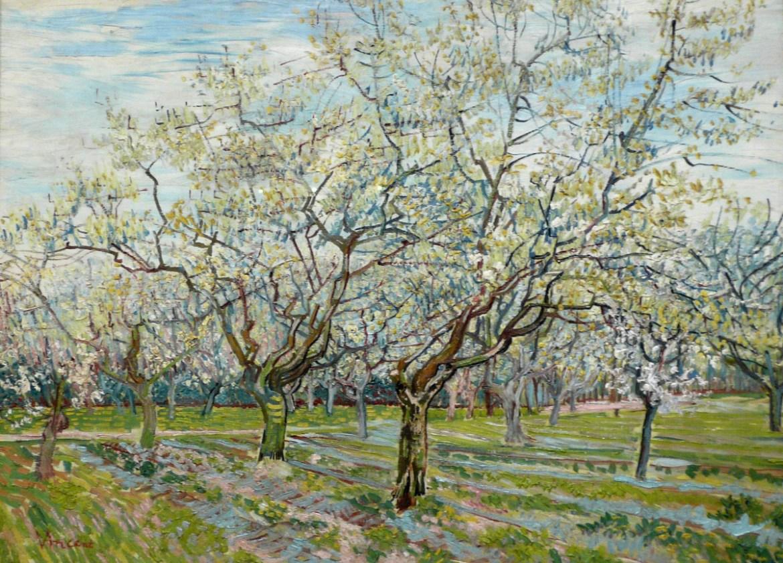 WLANL _-_ Jankie _-_ De_witte_boomgaard, _Vincent_van_Gogh_ (1888)