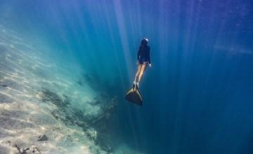 ระลึก 'วันมหาสมุทรโลก' ร่วมปกป้องท้องทะเลกับนักอนุรักษ์จากทั่วโลก