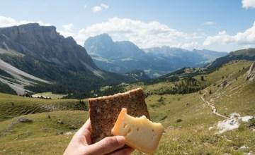 WWOOF Italy เลี้ยงผึ้ง หมักชีส เก็บองุ่น ที่ฟาร์มออร์แกนิคบนเทือกเขาสูงในอิตาลี
