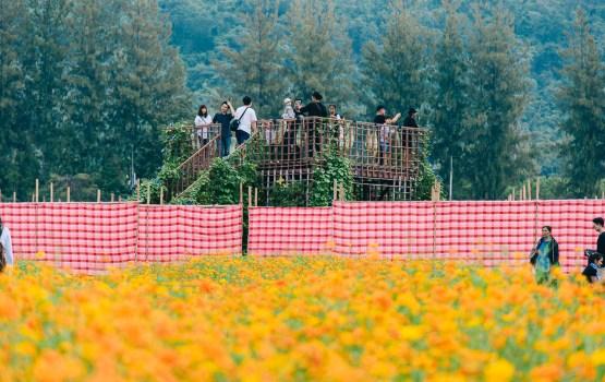 จิม ทอมป์สัน ฟาร์มทัวร์ 2559 'คักแท้แท้ แพรอีโป้' มหัศจรรย์ผ้าขาวม้า