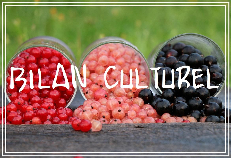 bilan culturel