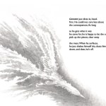 gannet-nm