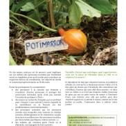 Article Durabilis 2010