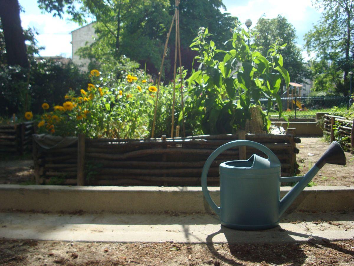 Le jardin Marcotte de Culture(s) en Herbe(s)