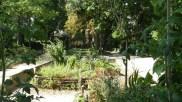 Le jardin Marcotte en juillet !