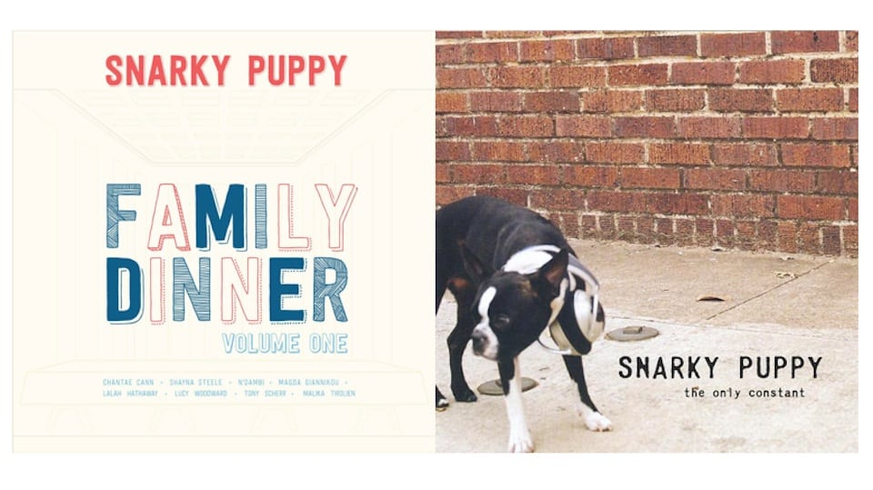 Snark Puppy LPs (Fair Use)