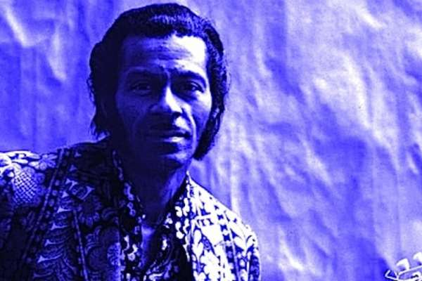 Chuck Berry Tinted Public Domain