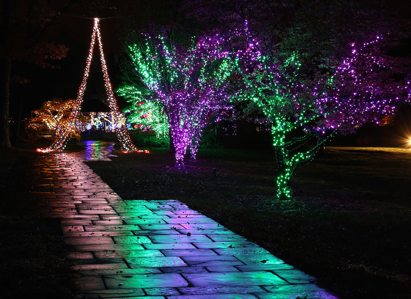 see the lights culturespotmc