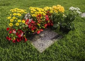 Natal cemetery 2 350x250
