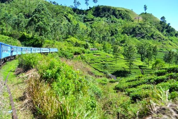 In the Hills of Sri Lanka's Tea Country Train