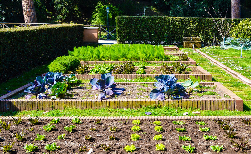 sustainable garden at the American Academy in Rome