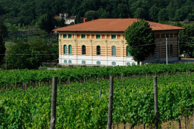 FATTORIA BETTI_The winery