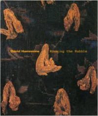 rousing the rubble - david hammons