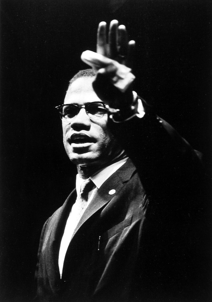 cointelpro and the assassination of malcolm x essay Malcolm x malcolm little was born on may 19, 1925 he was the son of louise and earl little of omaha, nebraska he was a very good student he was a very good student before dropping out in the 8th grade, and was even voted class president.