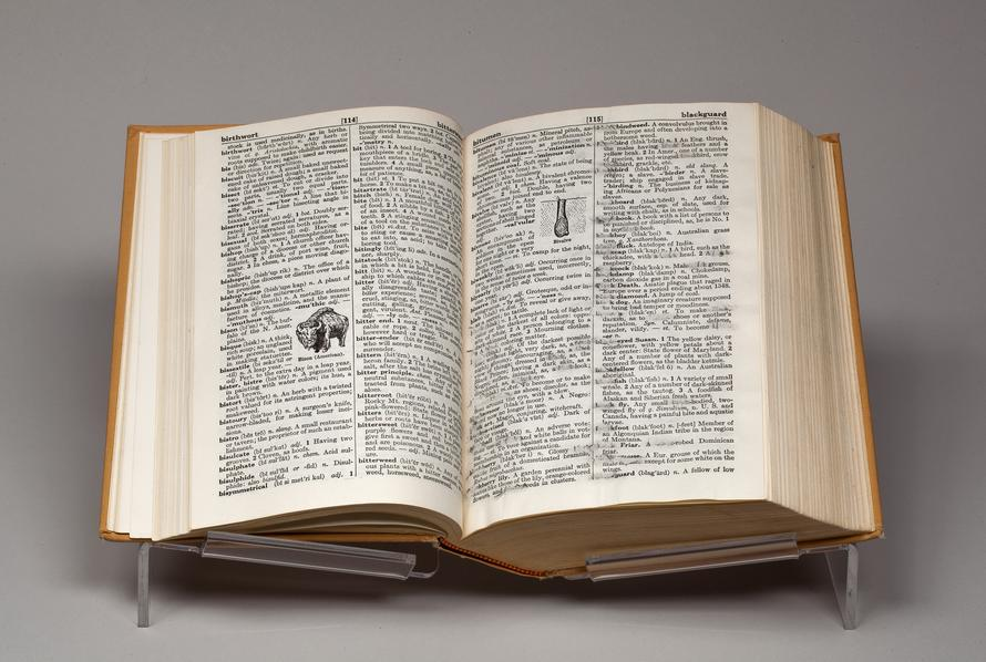 Collins_Black_and_Blue_Dictionary_2014_0615024_A2