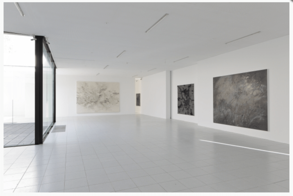 Installation view of Julie Mehretu & Jessica Rankin - Earthfold