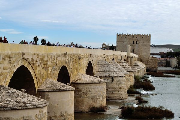 Musings Abroad-My Life in Spain: Exploring Córdoba