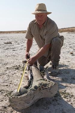 Mammoetexpert Dick Mol op expeditie