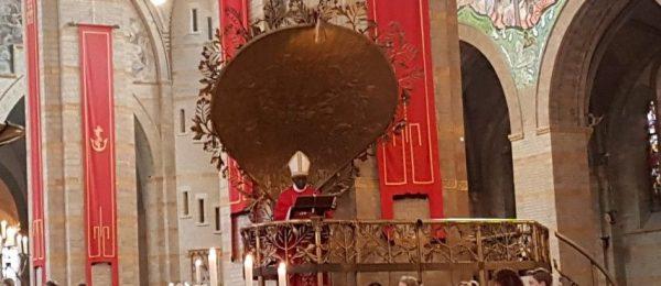Kardinaal Robert Sarah sprak op 9 juni 2019 pittige woorden tijdens zijn preek in de kathedrale basiliek sint Bavo