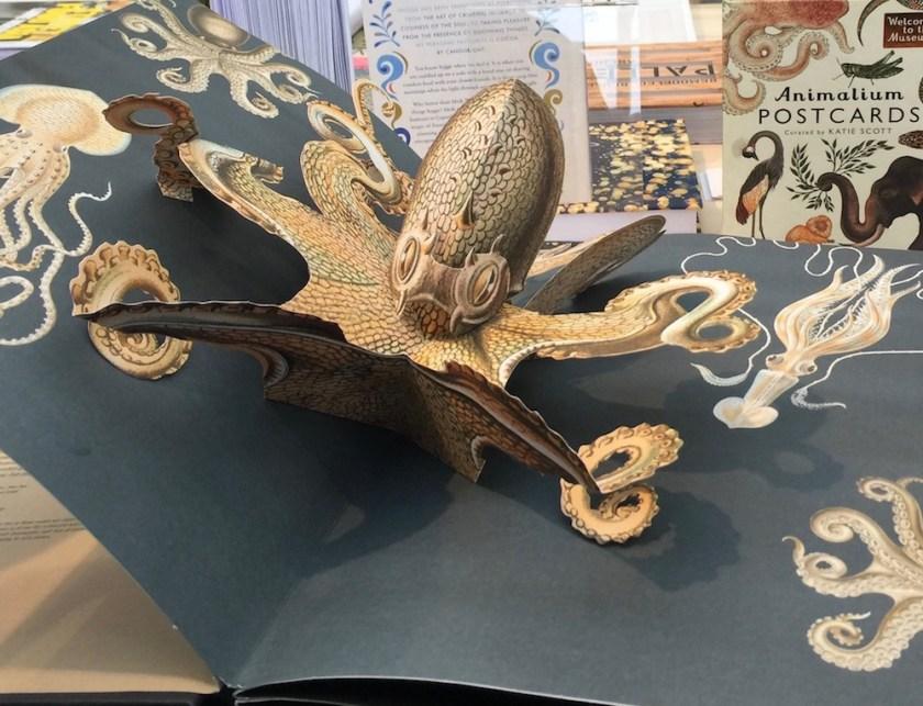 Pop-up boek Creatures of the Deep, Ernst Haeckel. Door Maike Biederstädt. EG