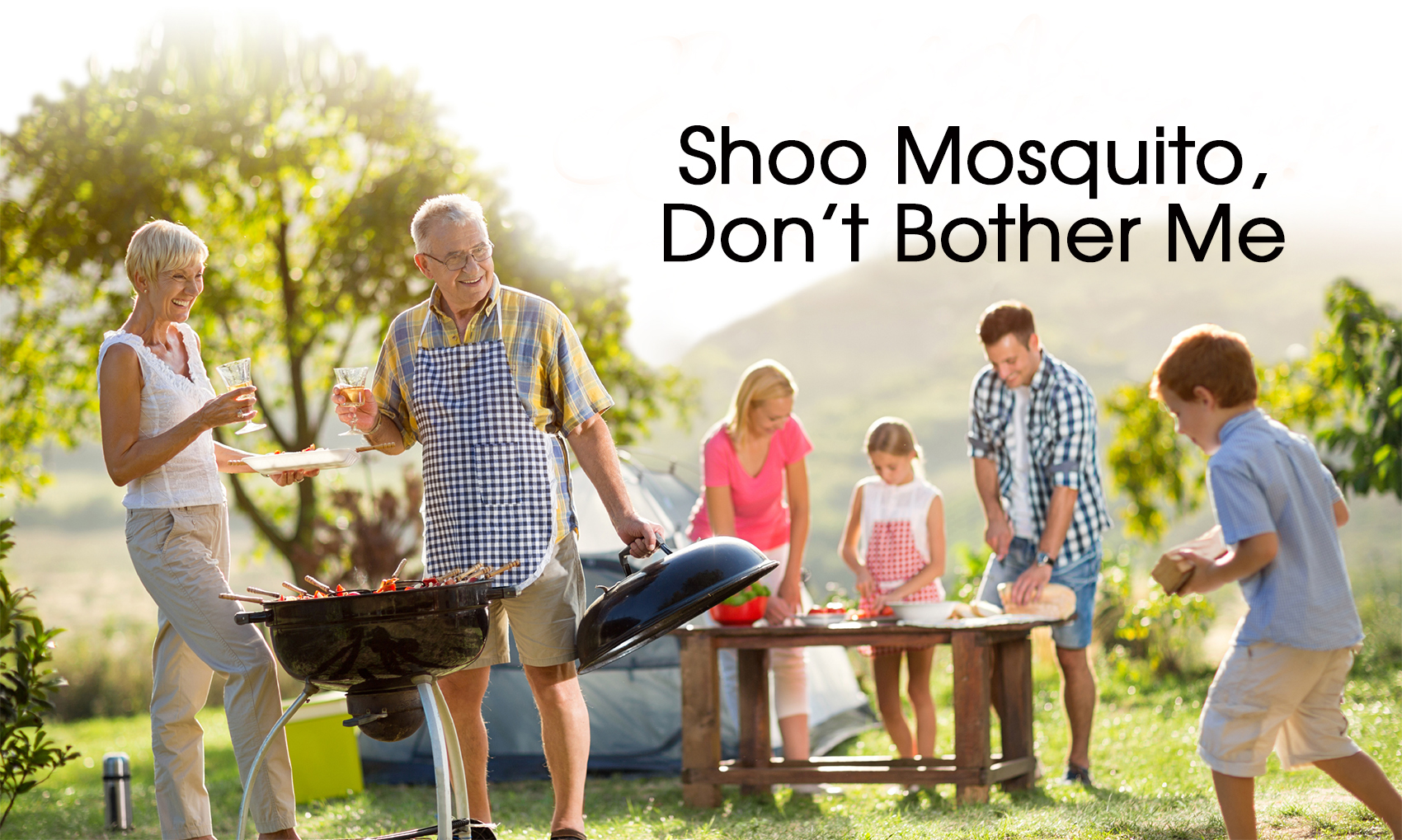 Shoo Mosquito, Don't Bother Me