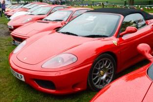 An Orchard full of Ferrari's